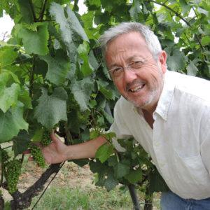 【アルタ・アレーリャ】来日記念 スペインワイン試飲会