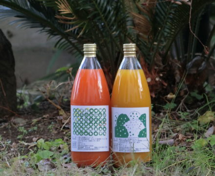 人参と林檎のジュースに「黄色」が!